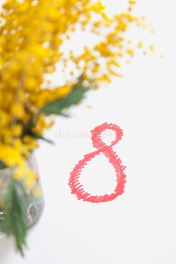 Niederlassung der gelben Mimose auf weißem Hintergrund Nahe roten 8 lizenzfreies stockbild