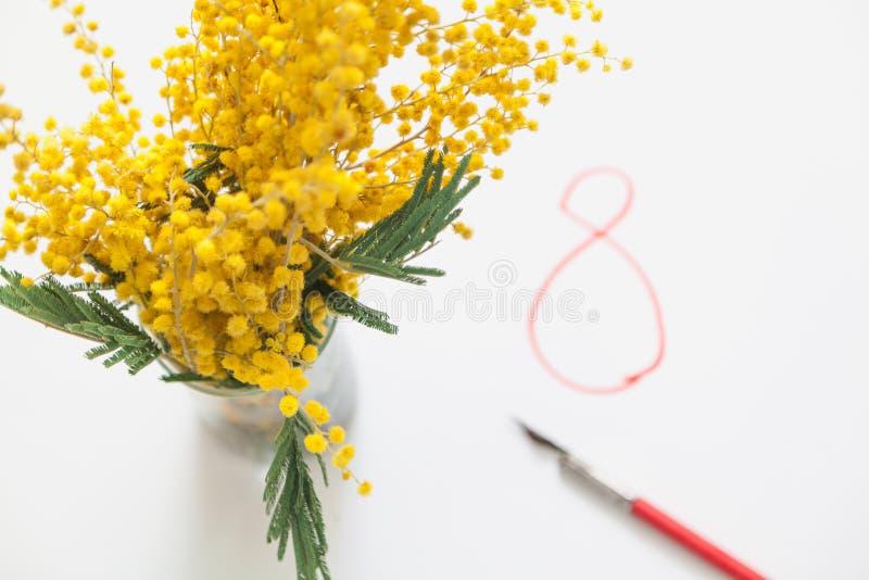 Niederlassung der gelben Mimose auf weißem Hintergrund Nahe roten 8 stockfotos