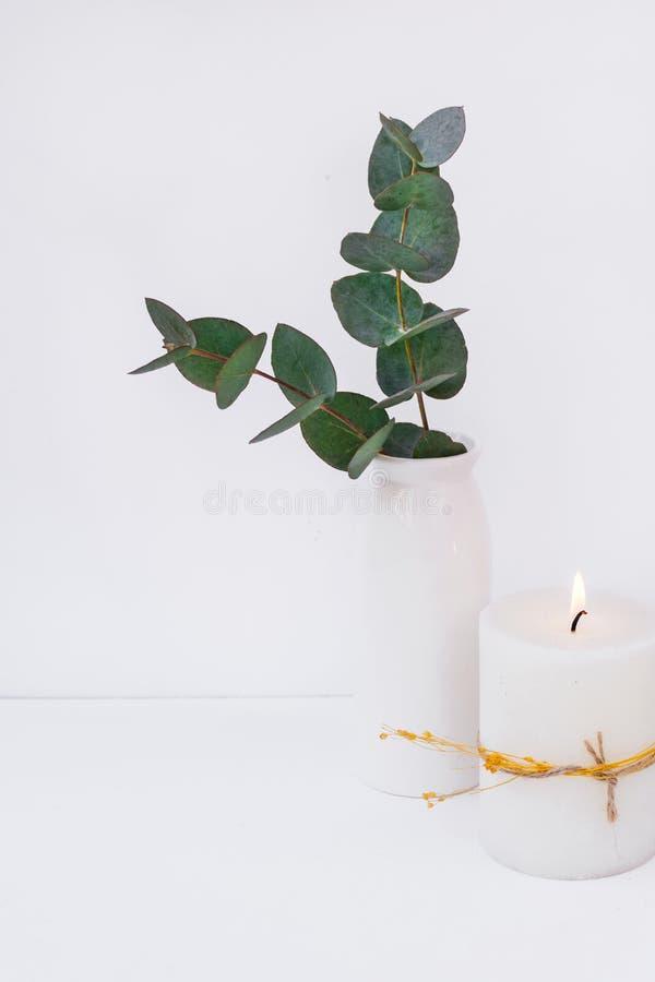 Niederlassungen des grünen Eukalyptus des silbernen Dollars im keramischen Vase, brennende Kerze auf weißem Hintergrund, angerede lizenzfreie stockfotografie
