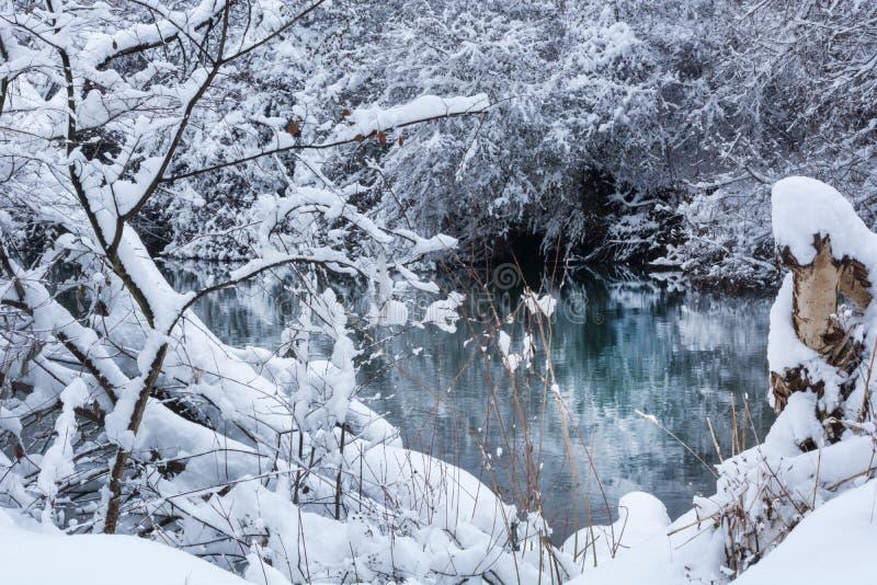 Niederlassungen und Baum bedeckt mit großem Schnee und Fluss stockfoto