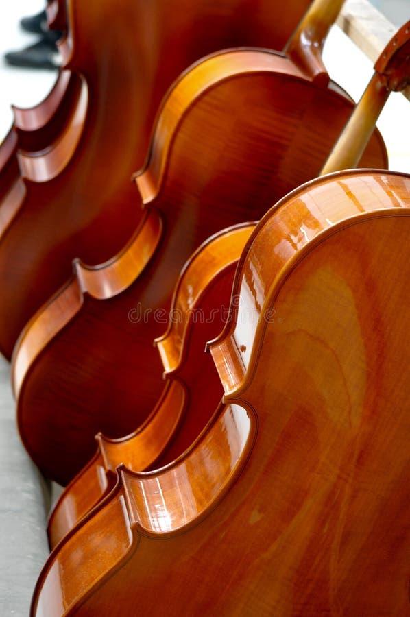Niedokończeni skrzypce obraz royalty free