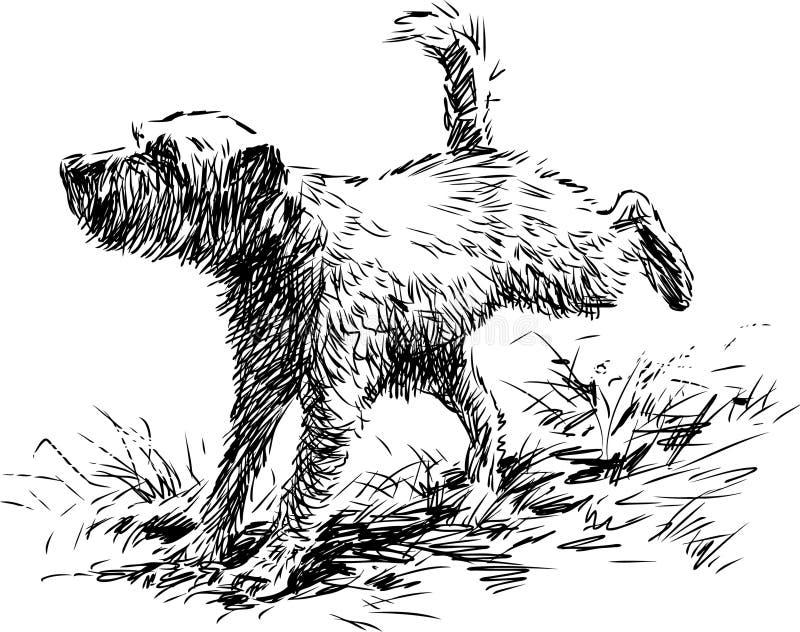 Niedorzeczny pies royalty ilustracja