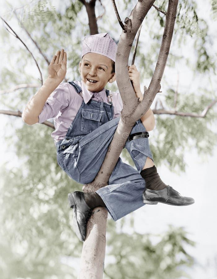 Niedrige Winkelsicht eines Jungen, der auf einem Baum sitzt (alle dargestellten Personen sind nicht längeres lebendes und kein Zu stockfoto