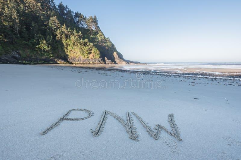 Niedriger Winkel von PNW im Sand lizenzfreies stockfoto
