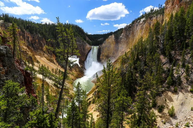 Niedrigere Fälle in Grand Canyon des Yellowstone im Sommer lizenzfreies stockbild