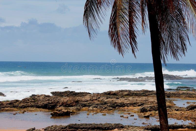 Niedziela Rano w Itapuan plaży obrazy stock