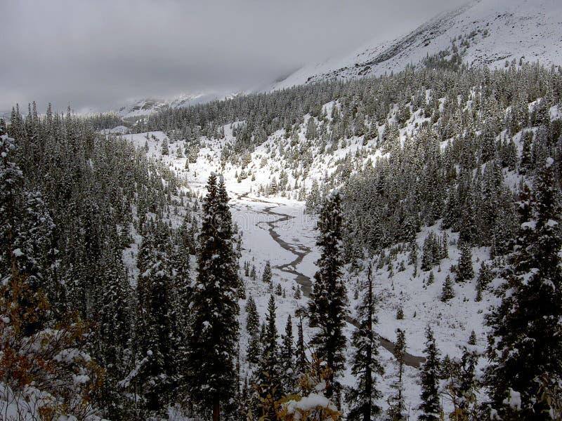 Download Śnieg na noc obraz stock. Obraz złożonej z góra, śnieg - 135635