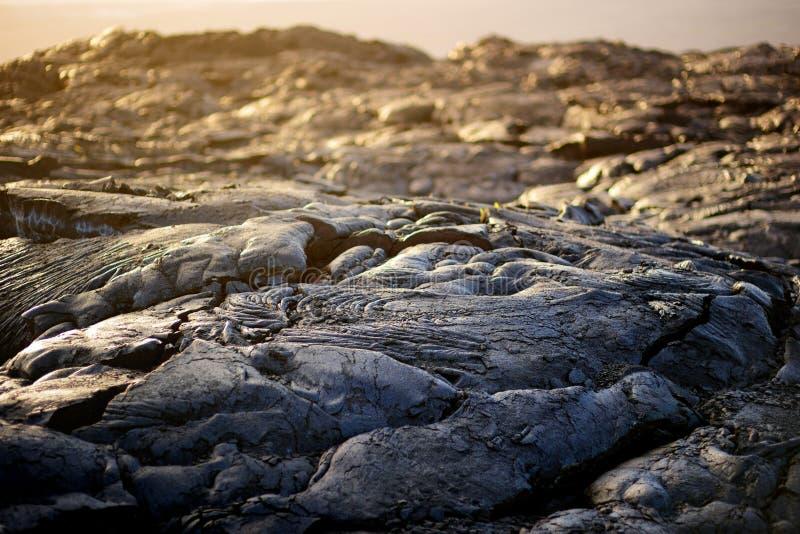 Niekończący się lawowi pola Duży Isalnd Hawaje Gładka, pofalowana powierzchnia zamarznięta pahoehoe lawa, zdjęcia royalty free