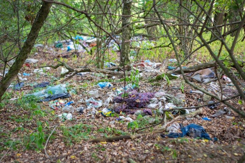 Niekontrolowany śmieciarski usyp między drzewami w lesie obraz stock