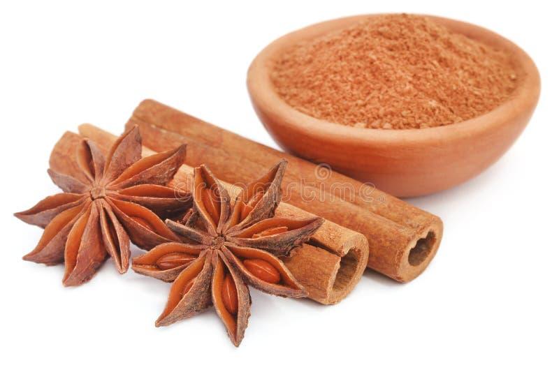 Niektóre aromatyczny cynamon z gwiazdowego anyżu i ziemi pikantnością w łęku zdjęcie stock
