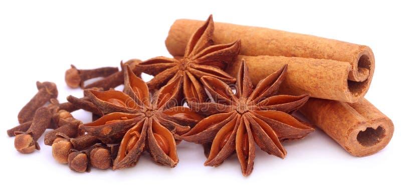 Niektóre aromatyczny cynamon z gwiazdowym anyżem i cloves obraz stock