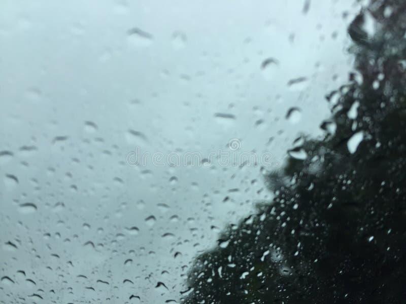 niektóre ludzie chodzą w deszczu, inny właśnie dostają wet//roger młynarki zdjęcie royalty free