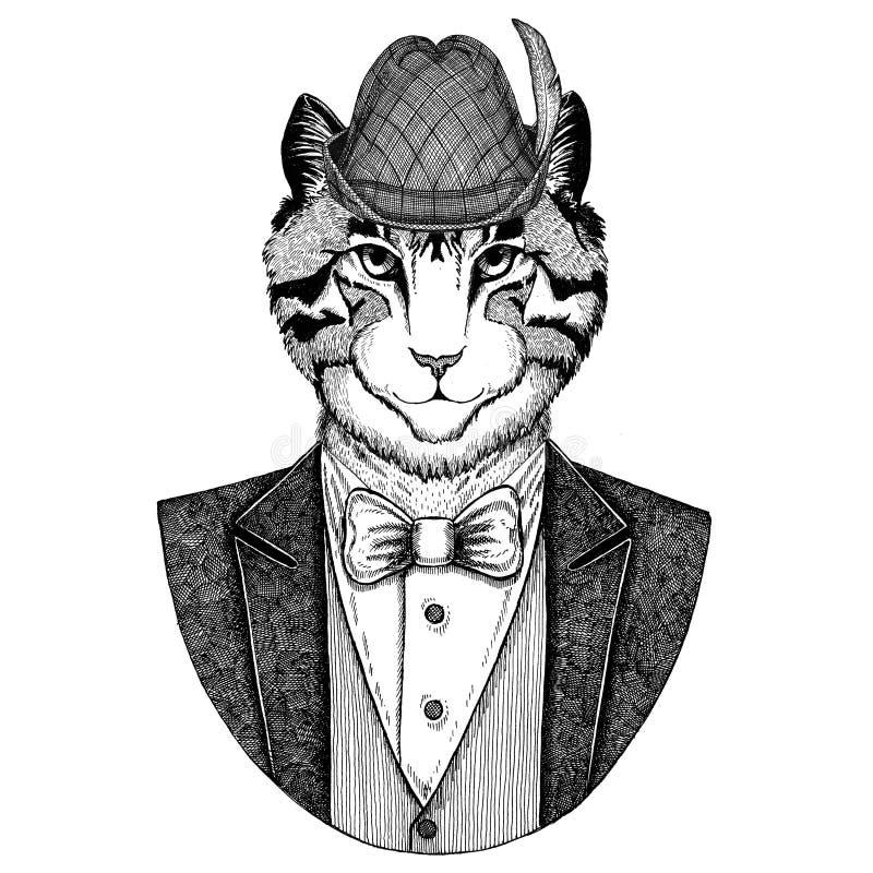Niemiec Tirol kapeluszowy Bawarski krajowy kapeluszowy wizerunek domowego kota ręka rysująca ilustracja dla tatuażu, emblemat, od royalty ilustracja