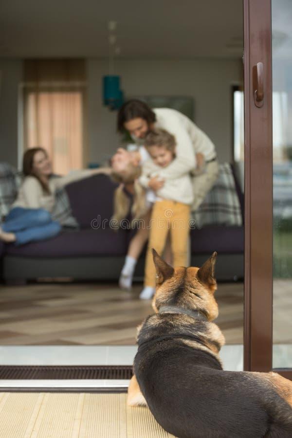 Niemiecka baca patrzeje inside dom z rodziną, tylni vertical obrazy stock