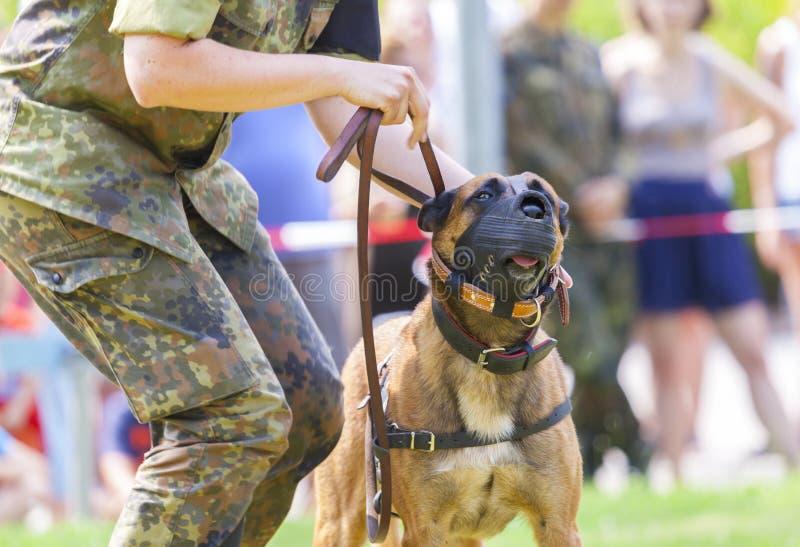 Niemiecka policja wojskowa jest prześladowanym zdjęcie stock