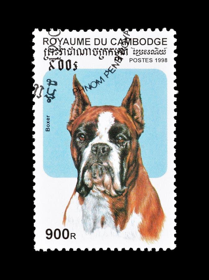 Niemiecki bokser na znaczku pocztowym zdjęcie royalty free