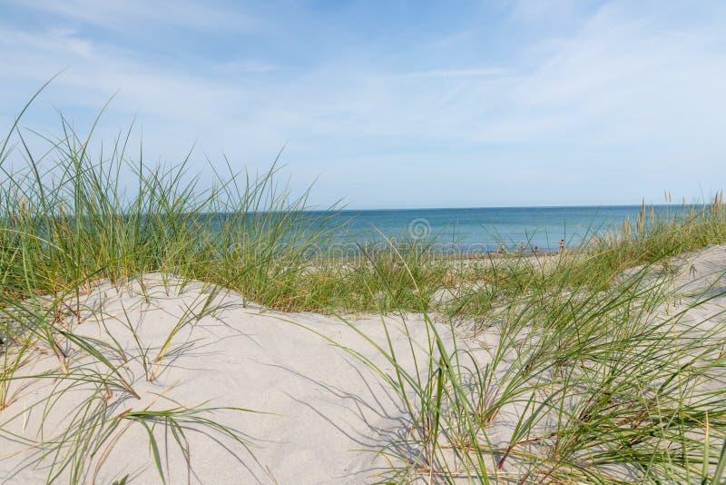 Niemiecki morza bałtyckiego wybrzeże z piasek diunami, trawą, wodą i niebem, zdjęcie stock