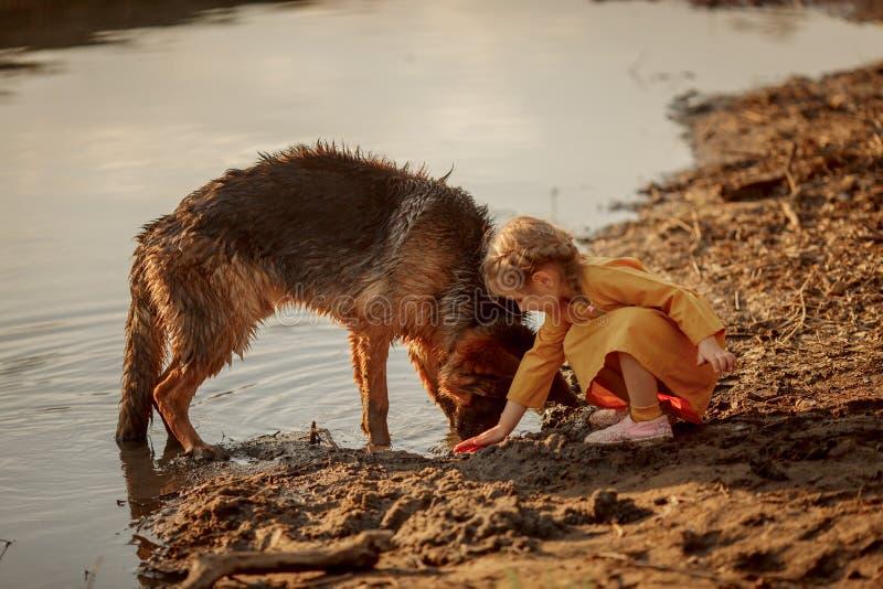 Niemiecki pasterski pies i ma?a dziewczynka blisko rzeki zdjęcie royalty free