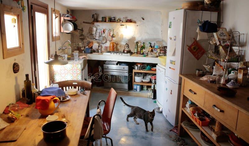 Nieociosana antykwarska kuchnia z kotem horyzontalnym zdjęcia royalty free