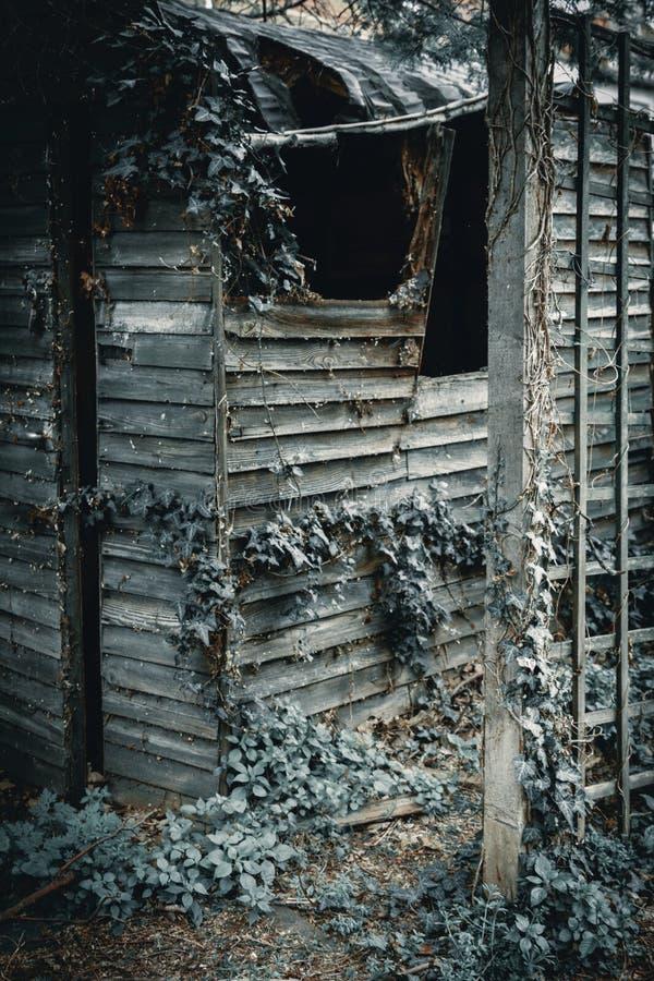 Nieociosana Ciemna stara drewniana jata fotografia royalty free