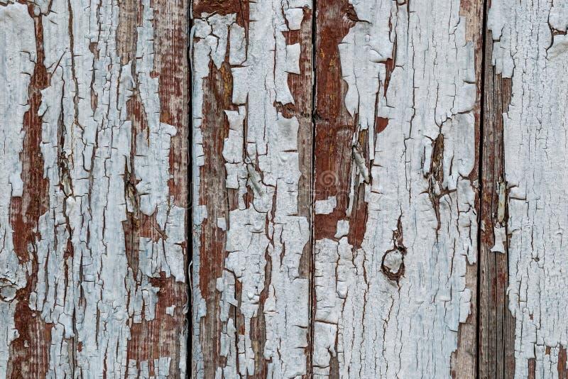 Nieociosana drewniana tekstura z krakingowej farby naturalnymi wzorami ukazuje się jako tło fotografia royalty free