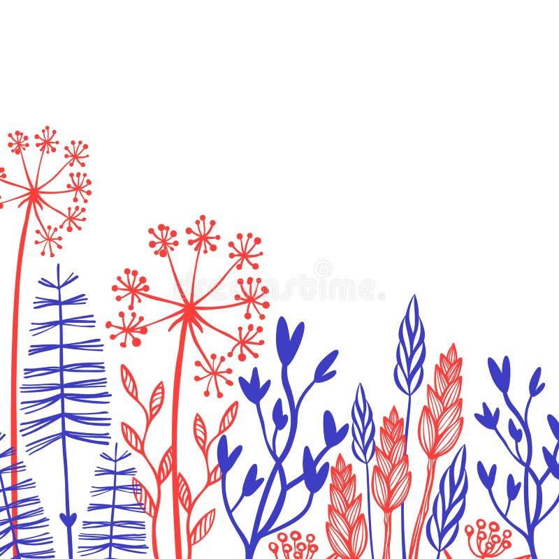 Nieociosane dekoracyjne rośliny i kwiaty inkasowi Ręka rysujący rocznika projekta wektorowi elementy ilustracja wektor
