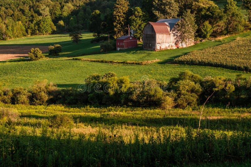 Nieociosany doliny gospodarstwo rolne zdjęcie stock