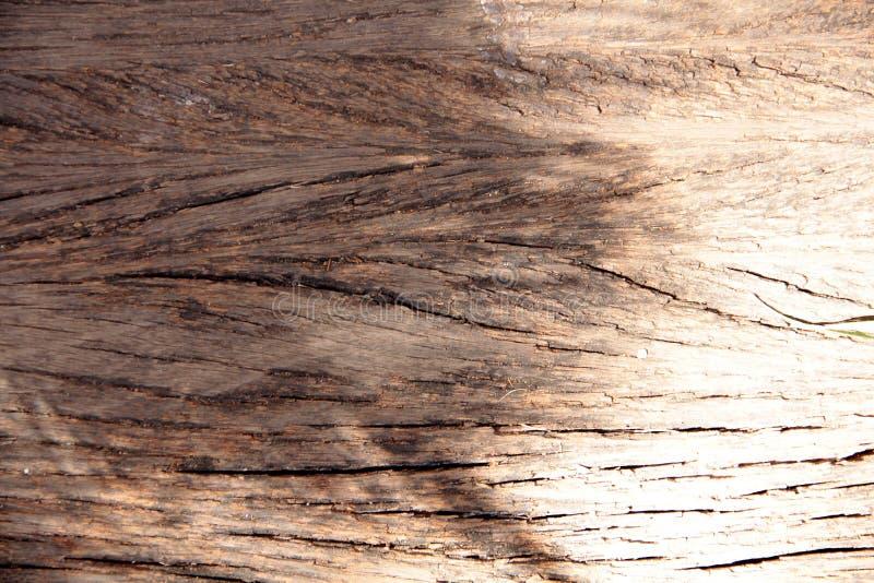 Nieociosany naturalny drewniany tekstury brąz fotografia royalty free