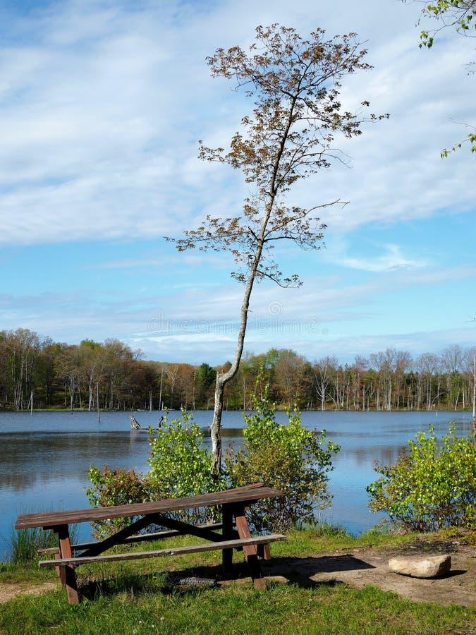 Nieociosany pykniczny stół obok halnego jeziora obrazy royalty free