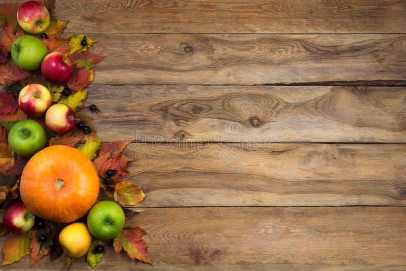 Nieociosany spadek kartki z pozdrowieniami tło z bani, liści, zieleni, czerwieni i koloru żółtego jabłkami, czarne jagody, kopii  zdjęcie stock