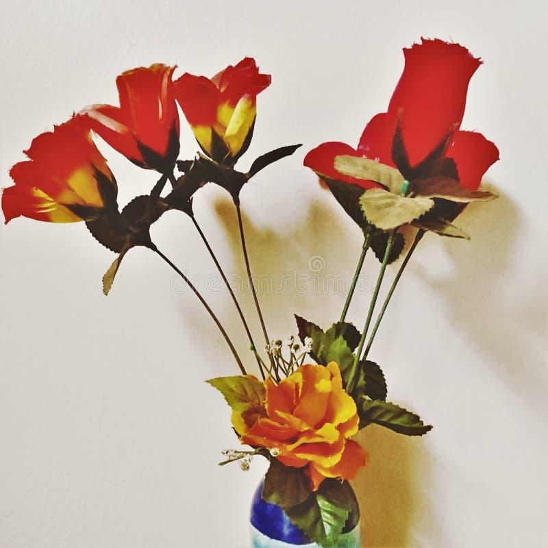 Nieokiełznane róże obrazy stock