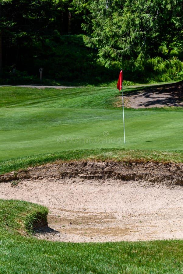Niepokoi na polu golfowym, zawiera szpilki z czerwoną flagą i grać w golfa ca, piaska oklepiec ochrania golfową zieleń z drzewami zdjęcia stock