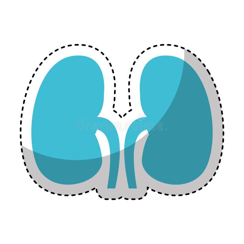 Nierenikone des menschlichen Organs lizenzfreie abbildung