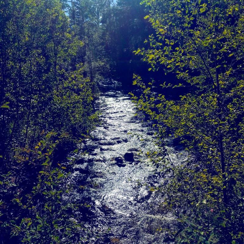 niesamowita rzeki zdjęcie stock