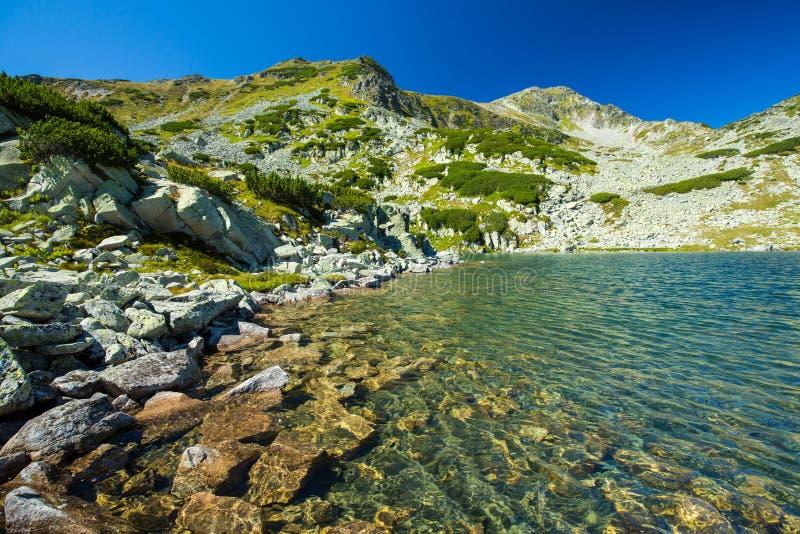 Nieskazitelny lodowa jezioro w Alps zdjęcia royalty free