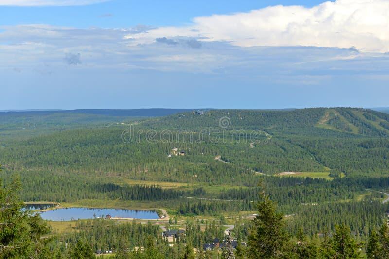 Nieskończeni lasy na zielonych wzgórzach Fiński Lapland zdjęcia royalty free