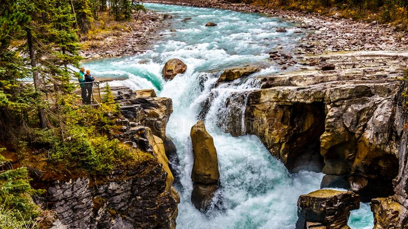 Niespokojna turkus woda Sunwapta rzeka Spada w Jaspisowym parku narodowym gdy ono b?bnuje w d?? Sunwapta zdjęcia stock