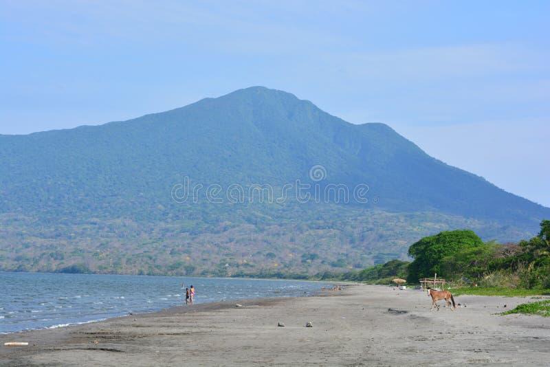 Niet geïdentificeerde mensen en een paard bij het Santo Domingo-strand, in Ometepe-Eiland, Nicaragua royalty-vrije stock fotografie