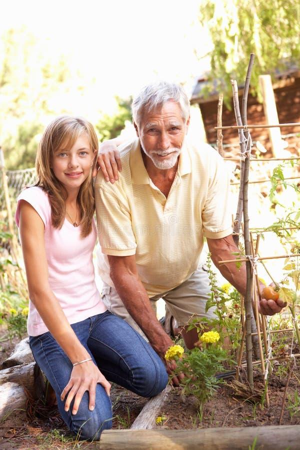 Nieta adolescente y abuelo que se relajan adentro fotografía de archivo