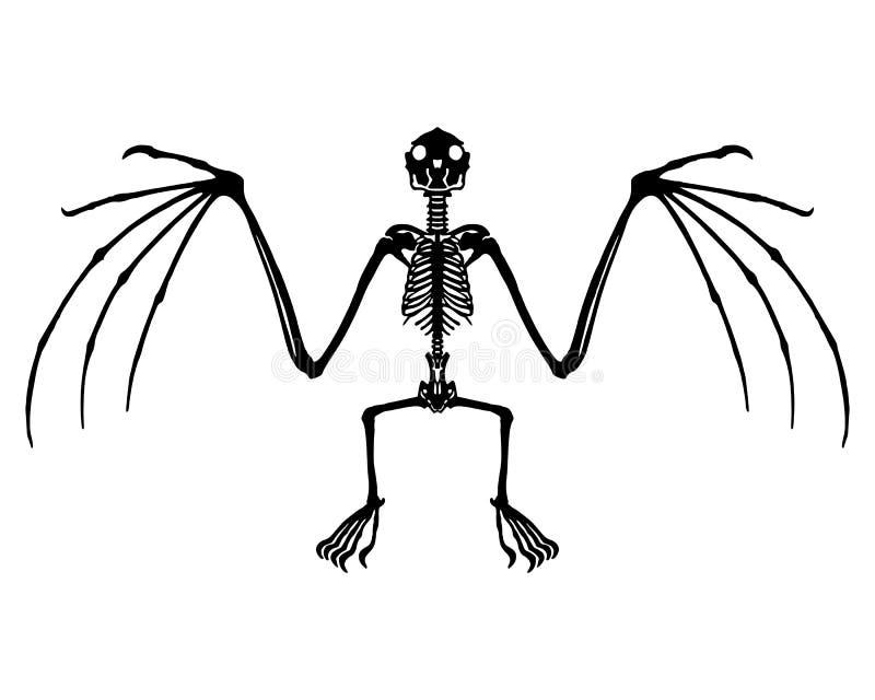 Nietoperza kościec ilustracja wektor