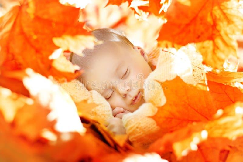 Nieuw Autumn Newborn Baby Sleep, - geboren Jong geitjeslaap in Bladeren royalty-vrije stock afbeelding
