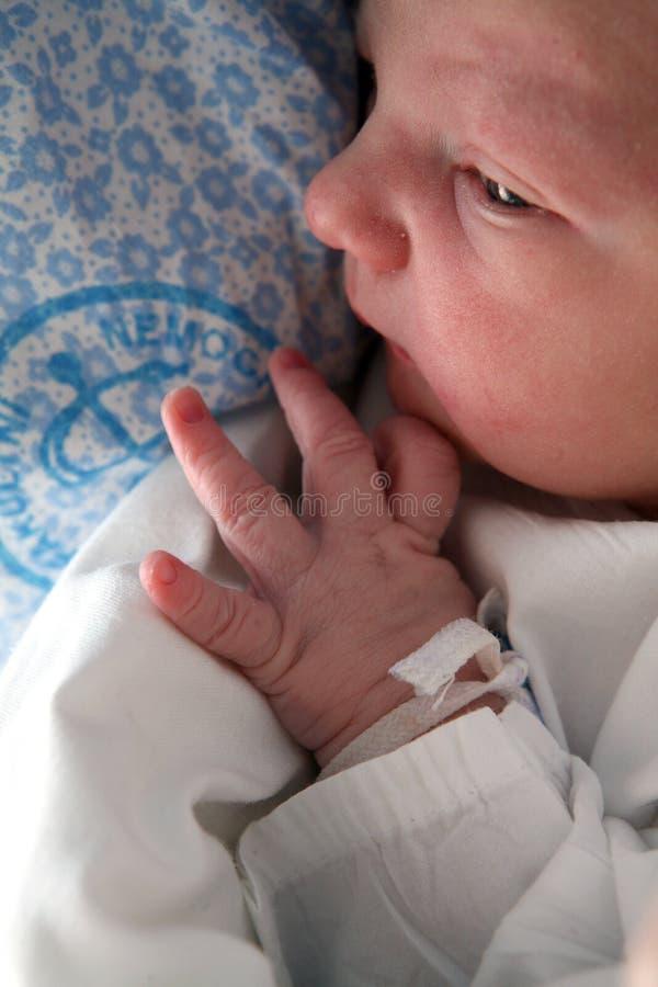 Nieuw - geboren baby stock foto's