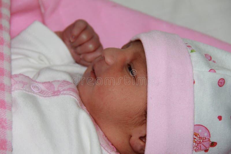 Nieuw - geboren babymeisje in roze doeken stock foto's