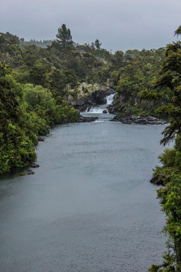 Nieuw Zeeland in de Zomer royalty-vrije stock foto