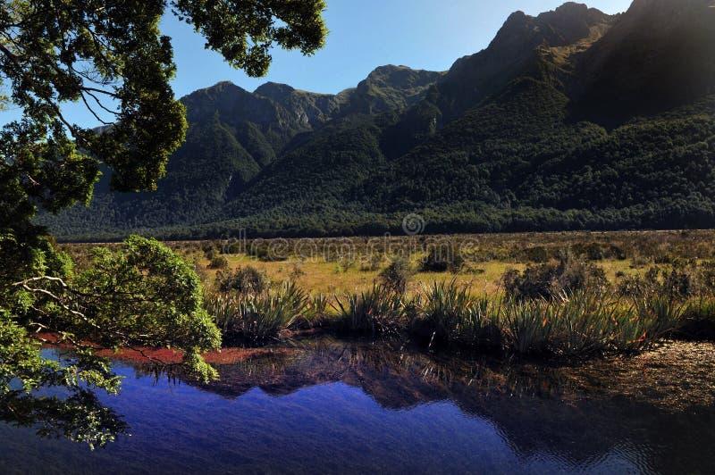 Nieuw Zeeland Fiordland royalty-vrije stock foto's