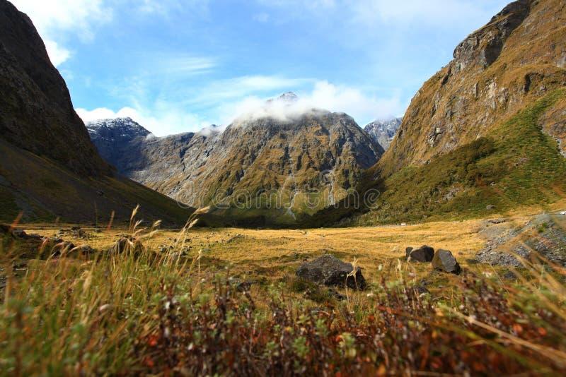 Nieuw Zeeland Fiordland bij het Geluid Milford stock foto