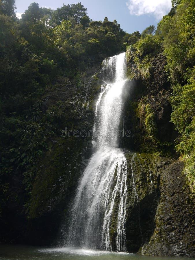 Nieuw Zeeland: Kitekitewaterval royalty-vrije stock foto