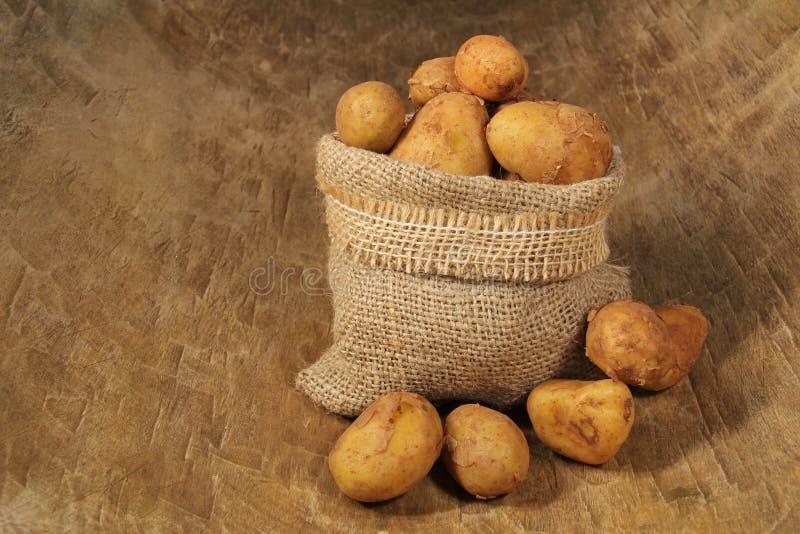 Nieuwe aardappels royalty-vrije stock foto