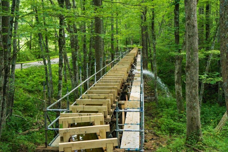 Nieuwe Goot bij Mabry-Molen, Blauw Ridge Parkway, Virginia, de V.S. stock fotografie