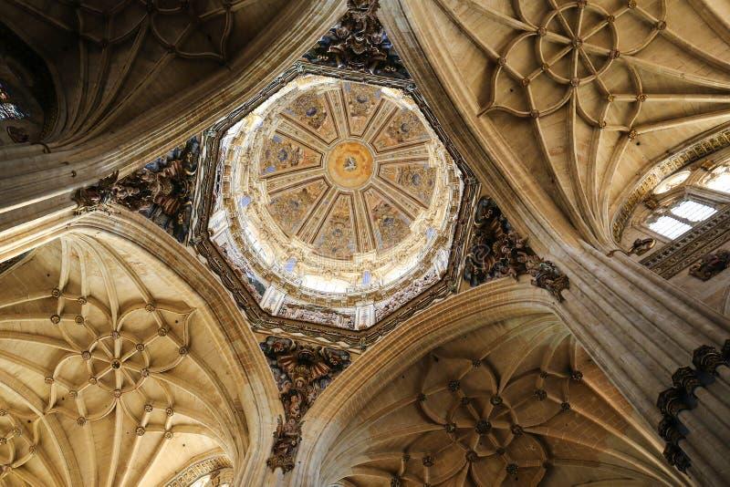 Nieuwe Kathedraal van Salamanca stock afbeeldingen